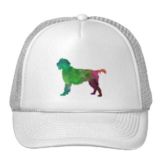 Wirehaired Pointing Griffon Korthals in watercolor Gorras