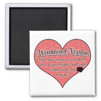 Wirehaired Vizsla Paw Prints Dog Humor 2 Inch Square Magnet