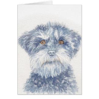 Wirey terrier card