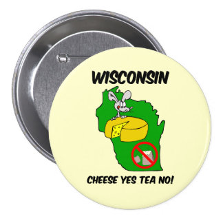 Wisconsin anti tea party pins