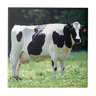 Wisconsin Dairy Cow Ceramic Tile