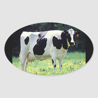 Wisconsin Dairy Cow Stickers