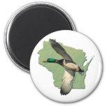 Wisconsin duck magnet