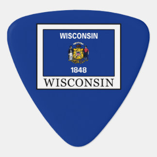 Wisconsin Guitar Pick