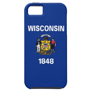 Wisconsin State Flag iPhone 5 Cases