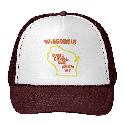 Wisconsin viene olor nuestro aire de la lechería gorra