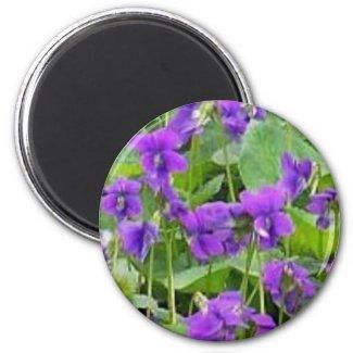 Wisconsin Wood Violets magnet