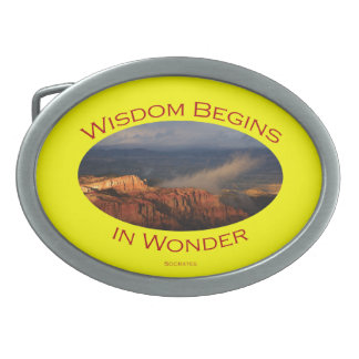 wisdom begins in wonder oval belt buckle