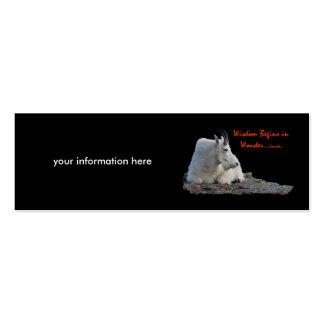 wisdom begins in wonder business card