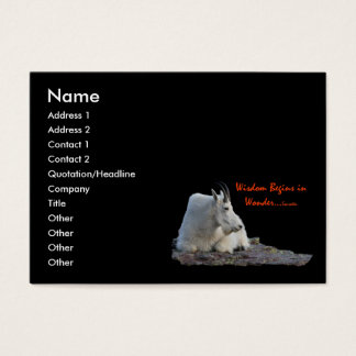 wisdom begins in wonder business card