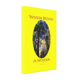 wisdom begins in wonder gallery wrap canvas