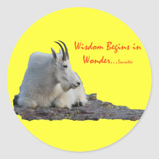 wisdom begins in wonder classic round sticker