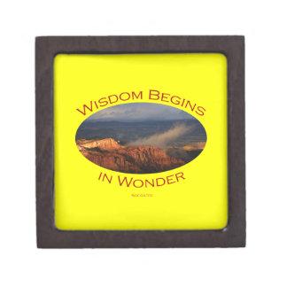 wisdom begins in wonder gift box