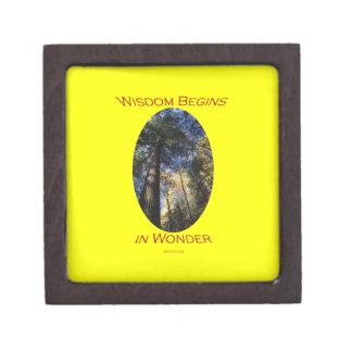 wisdom begins in wonder jewelry box