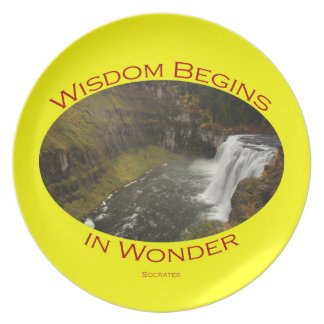 Wisdom Begins in Wonder Plate