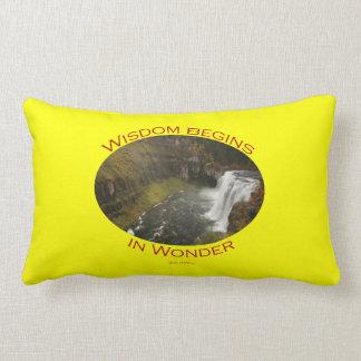 Wisdom Begins in Wonder Throw Pillow
