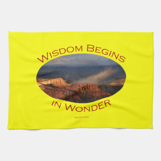 wisdom begins in wonder towel