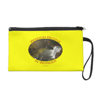 Wisdom Begins in Wonder Wristlet