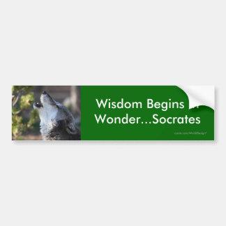 Wisdom Bumper Stickers