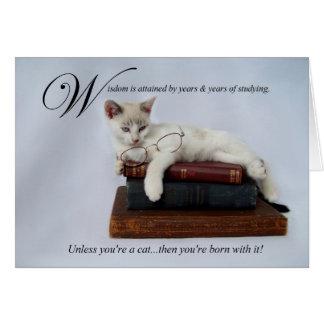 Wisdom (cat) Card