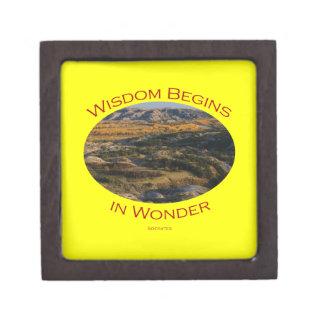 wisdom gift box
