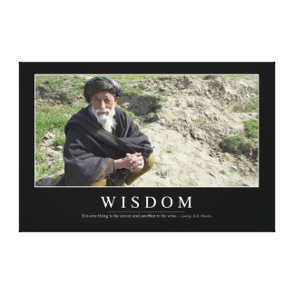 Wisdom: Inspirational Quote 1 Canvas Print
