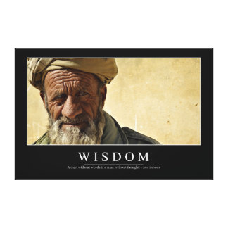 Wisdom: Inspirational Quote 2 Canvas Print