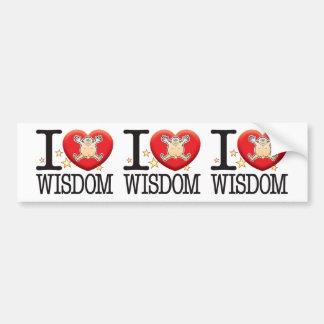 Wisdom Love Man Bumper Sticker