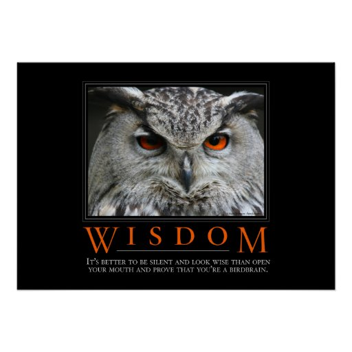 Wisdom Motivational Parody Poster