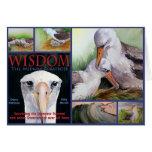 WISDOM Notecards Greeting Cards