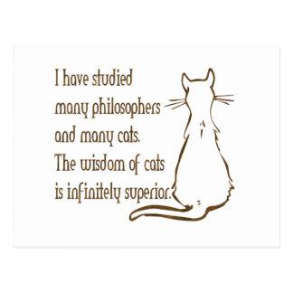 Wisdom of Cats Postcard