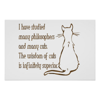 Wisdom of Cats Poster