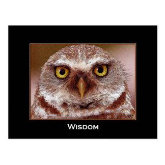 WISDOM OWL POSTCARD