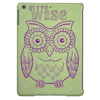wise and cute owl decorative iPad case