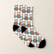 Wise Brown Teal Blue Barn Owl Cartoon Bird Socks