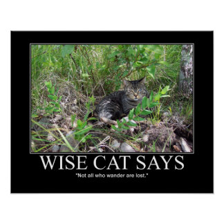Wise Cat Says..Not All Who Wander Are Lost Artwork Poster