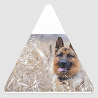 Wise German Shepherd Puppy Triangle Sticker