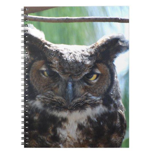 Wise Long Eared Owl Notebook