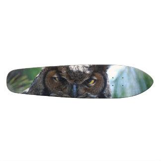 Wise Long Eared Owl Skate Board