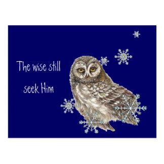Wise Men Still Seek Him Quote Owl Bird Postcard
