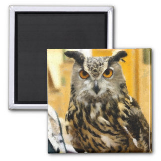 Wise Old Owl 2 Inch Square Magnet