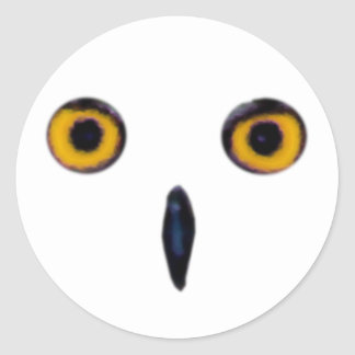 Wise Old Owl Eyes Classic Round Sticker