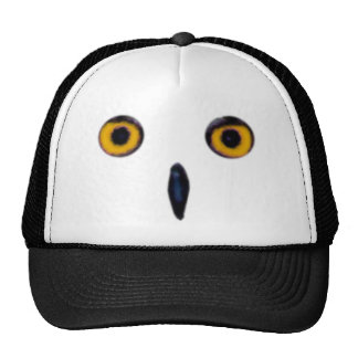 Wise Old Owl Eyes Mesh Hat
