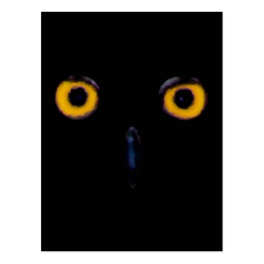 Wise Old Owl Eyes Postcard