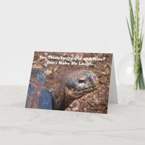 Wise Old Tortoise Happy Birthday Humor Card