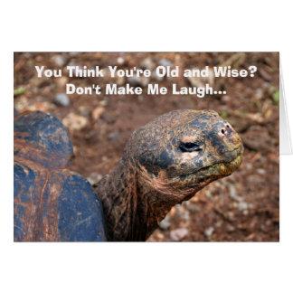 Wise Old Tortoise Happy Birthday Humor Card