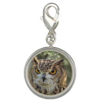 Wise Owl Charms
