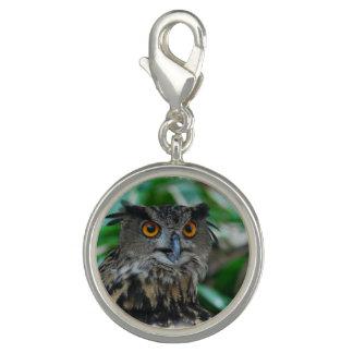 Wise Owl Photo Charm