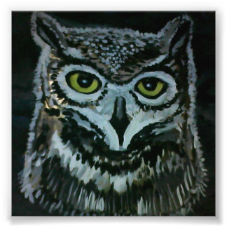 Wise Owl Photo Art