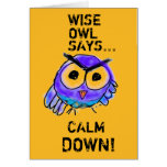 Wise owl says calm down! greeting card